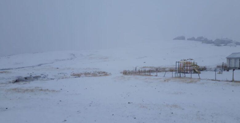 Ağrı'nın yüksek kesimlerine kar yağdı