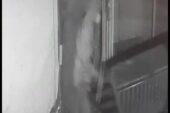 Ağrı merkezde bir apartmandan bisiklet ve bir işyerinin kapısını çalan hırsız yakalandı
