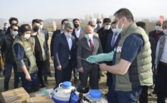 Ağrı'da Suni Tohumlama Yaygınlaştırma Projesi başladı