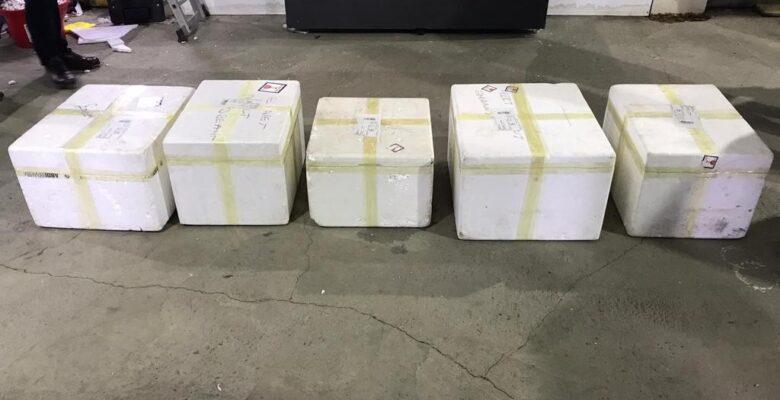 Ağrı'da 40 kilo 304 gram eroin ele geçirildi