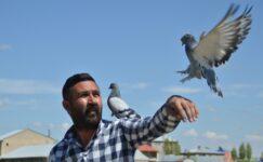 Kısıtlama günlerini servet harcadığı güvercinleriyle geçiriyor